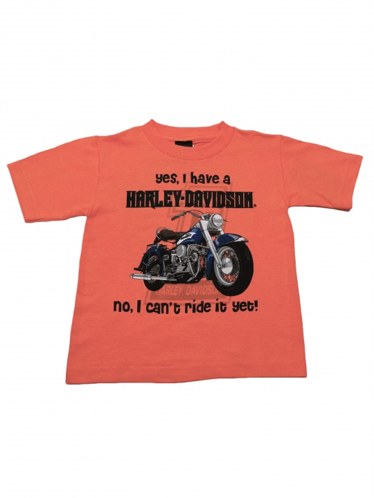 BOYS YES I HAVE HARLEY TEE